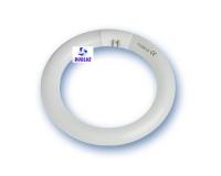 Tubo Circular 22w/865