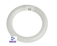 Tubo Circular LED 12W 6500K