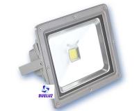 Proyector LED 50W alto brillo 3000K -