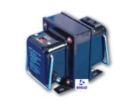 Auto-Transformador 110V/220V  300W