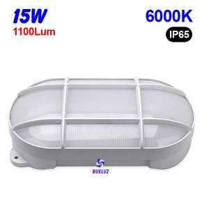 Aplique ovalado LED 15W 6000K Blanco