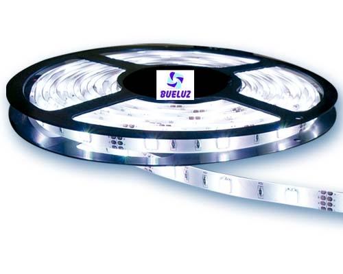 Tira LED 4,8W/Metro 6500ºK IP-65 -